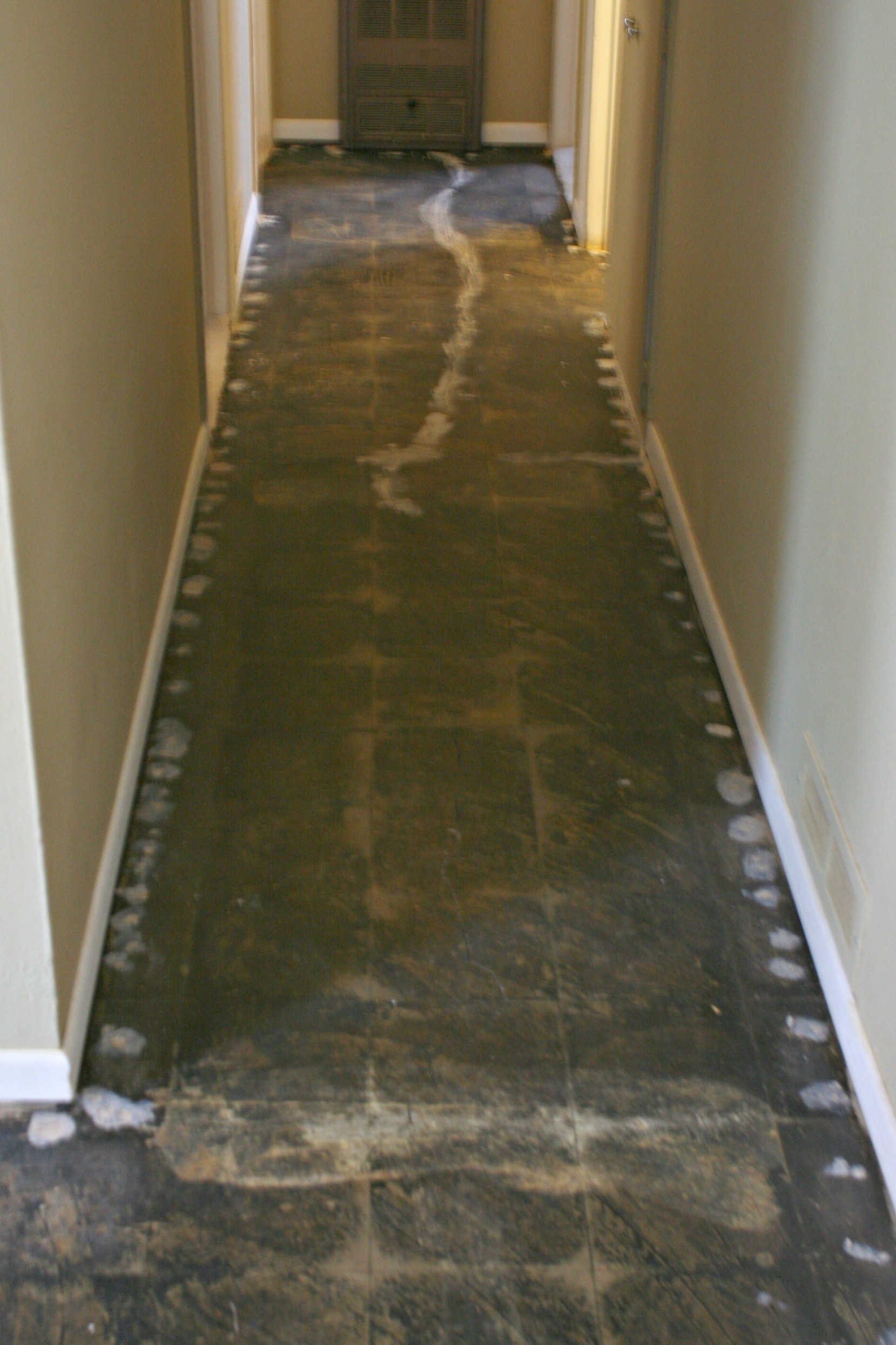 Carpet Tack Strip Asbesto Tile Carpet Vidalondon