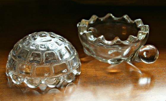 glassturtle