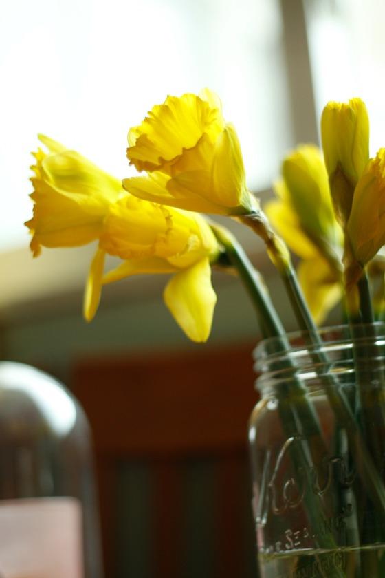 springflower3